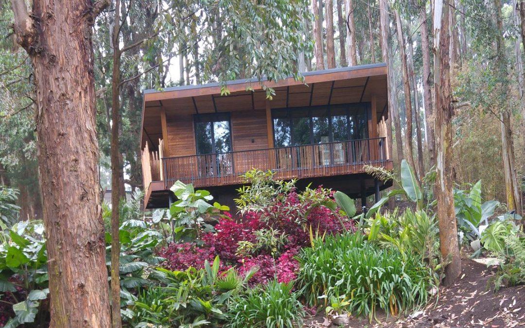 Projekt Gorilla Nest Lodge, Rwanda u Africi !